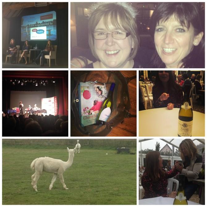 Henley Literary Festival 2013