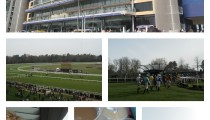 Family Day Out — Ascot