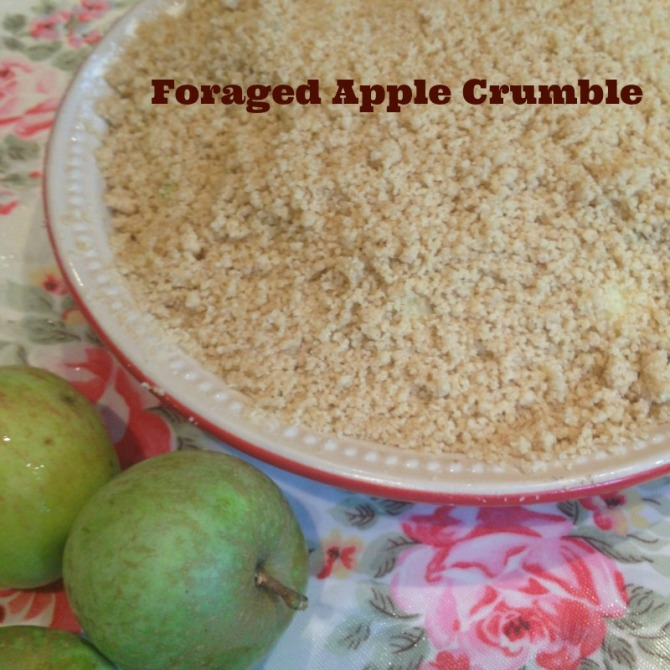 Foraged apple crumble