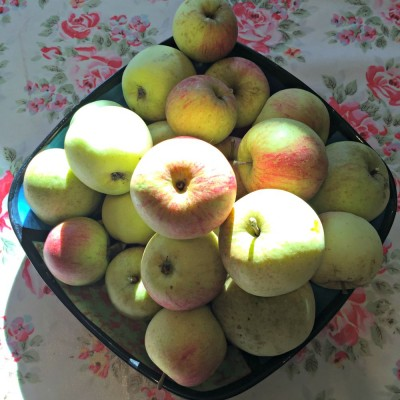 The Audley End Apple Festival